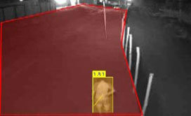 Detection of movements of persons + objects in defined areas. Analysis / Reporting.